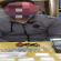 القبض على متهم بحوزته أدوات تعاطي المخدرات وسط البصرة