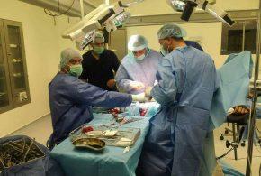 نجاح عملية تثبيت داخلي لكسر وزراعة عظم من الفخذ الأيمن لمريض عشريني في مستشفى الهندية العام