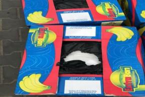 تحقيق البصرة تكشف عن نوعية المواد التي ضبطت في ميناء ام قصر: كوكايين