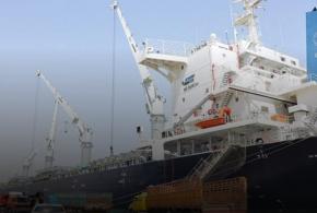 وصول أكثر من 31 ألف طن من الرز الى ميناء ام قصر