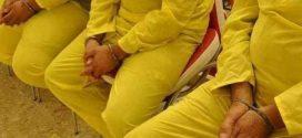 شرطة كربلاء: القبض على سراق أجانب وإرجاع(18) مليون دينار