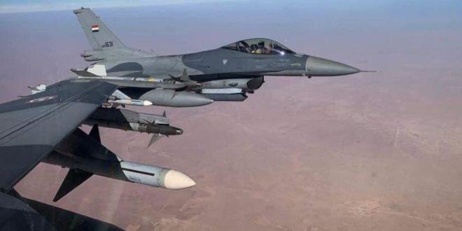 صقور الجو تحلق فوق سماء محافظة المثنى من جديد